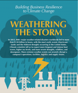 Weathering the Storm: Building Business Resilience to Climate Change, C2ES